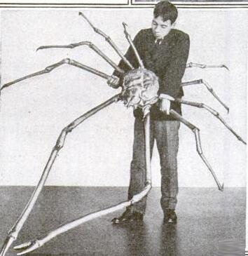 RT @BrianDunning: This is a real spider. (Well, actually a spider crab.) From a 1920 @PopSci magazine. http://t.co/u90zWePfMD