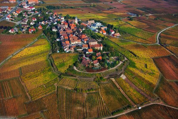 Ça vient de tomber ! L'Alsace a été élue la région viticole la plus populaire au monde !! http://t.co/6QpqXIx4KV