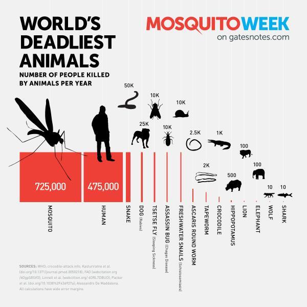 蚊は毎年70万人以上の人間を殺す。でも二番目に人を殺す動物は人間自身だという恐ろしさ。RT @wbclimatechange http://t.co/a5NFEHGUOd