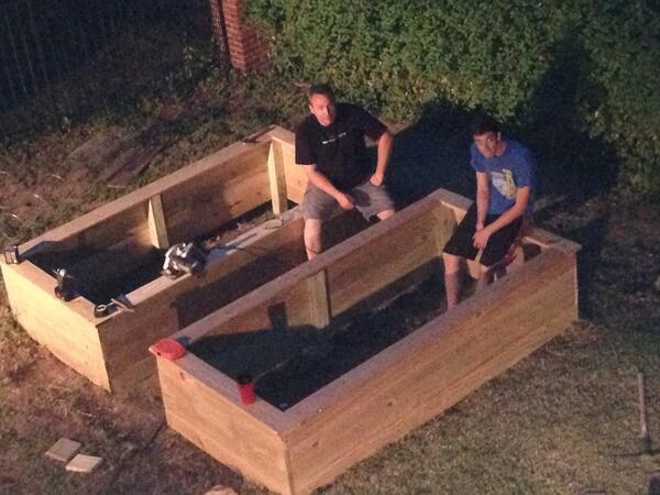 The mister & the boy built me 2 raised garden beds! #gardening #herbs #veggies #eathealthy http://t.co/Hg6cZSnK8n