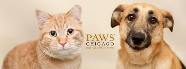 The @PAWSchicago event is in 2 weeks! We are looking forward to welcoming the you to 110 E Oak Street! http://t.co/g71h7EKUC3
