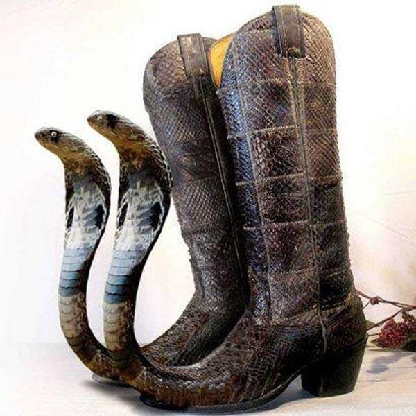 Not being taken seriously enough in your fundraising meetings? I suggest wearing these to your next VC meeting. http://t.co/vVPDl6DcTt