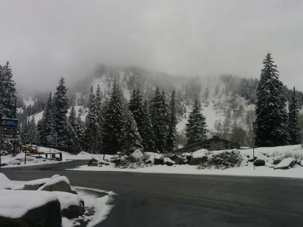 My current view from Salt Lake City, and yes, it is snowing.... http://t.co/yhl684UpFG