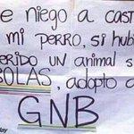 RT: @dolartoday :¡NO VOY A CASTRAR A MI PERRO! Si hubiese querido un animal SIN BOLAS adopto a un GNB https://t.co/JBDQ3YQjLZ