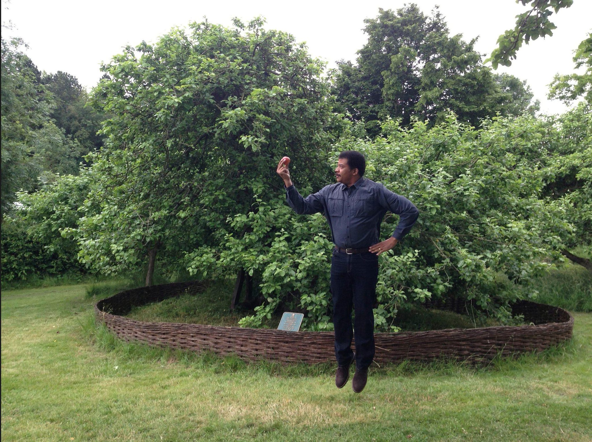 Newton's AppleTree at his home. Hold an Apple nearby & you rise weightless, they say. #WatchingCosmos http://t.co/5lO4VZLTFB