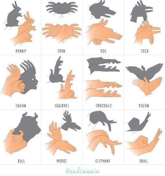 How to make shadow puppets with your hands http://t.co/3mtooABGFP