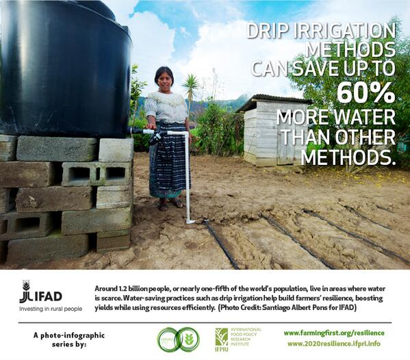 [INFOGRAPHIC] Drip irrigation can save up to 60% more water: http://t.co/J8ZftqjwYT #2020resilience @IFADnews http://t.co/lGxHZZDfXP