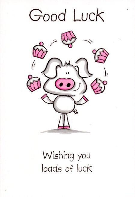 Good luck to anyone doing exams! #sendingpositivevibesyourway http://t.co/Eb5dzZXUVu