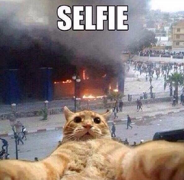 RT @FactsOfSchool: Me if my school burned down http://t.co/RvOMJGMWW4