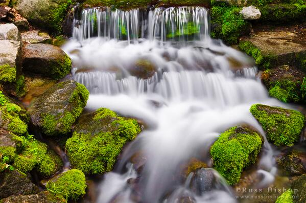 Fern Spring, Yosemite NP, Ca ~ Hi-res: http://t.co/Q69QCN31wn #waterfallwednesday #yosemite #usnp #california #travel http://t.co/4YAYBXFJOc