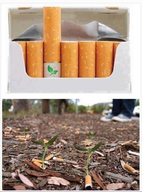 Biodegradable cigarette filters with flower seeds. Save the Planet, Kill Yourself. http://t.co/fQNcYrK5pQ