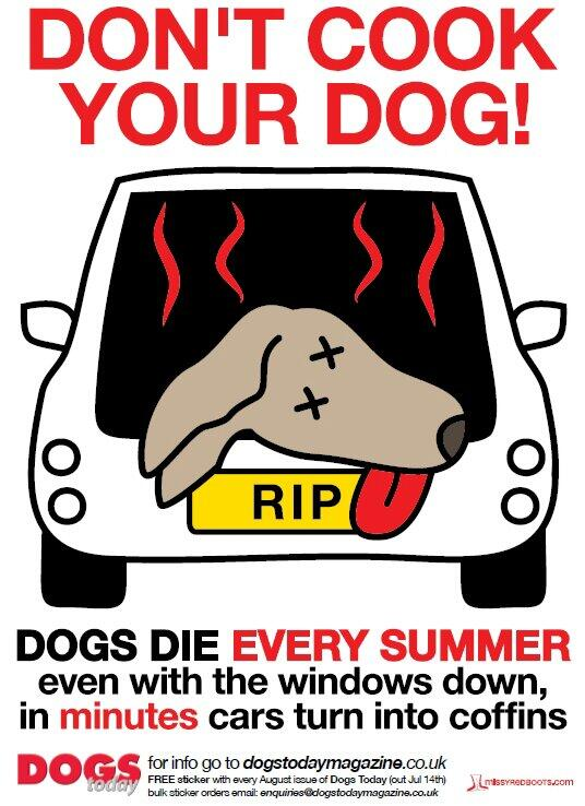 Its getting hot outside! Don't be that asshole with your dog locked in your hot car. http://t.co/n7emZiTUJh