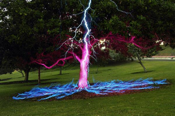 Long exposure photo of a lightning bolt hitting a tree. http://t.co/HWTBjxrcgP