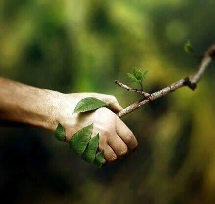 Respect nature. http://t.co/T7rtNZ7lAU