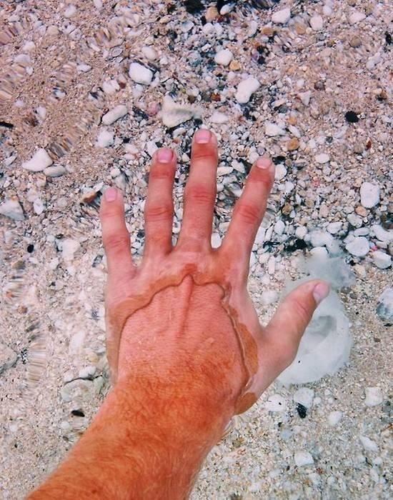 This is how it looks when you put your hand in the ultra-clear water of the Flathead Lake in the USA: http://t.co/DY77o4Ix6Z