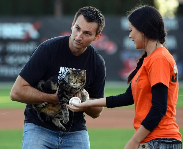 Tara the Hero Cat, famous for saving a local boy from a dog attack, threw out the first pitch for @BakoBlaze today: http://t.co/rKYc4mX3H4