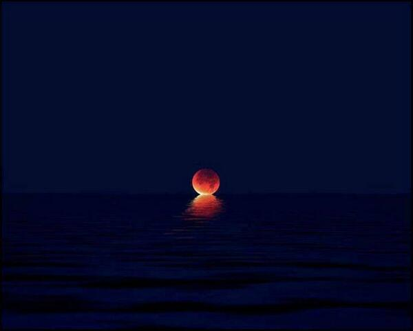 What happens when the moon kisses the sea: http://t.co/V019OH9oX9