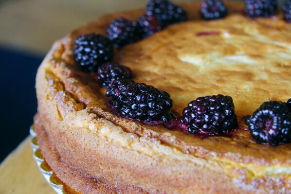 Our ricotta cheesecake this week is delicious AND gluten free!  Try a slice or order a whole cake at Lucia's To Go. http://t.co/GqJZYFRRIg