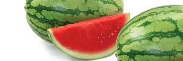 Enjoy limited time savings on large seedless #watermelon. Check your local club for low member price. RT to share! http://t.co/ajGf0DCNSm