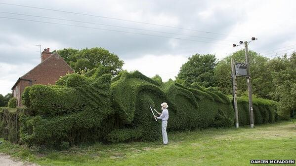 My hero of the day is 75yo John Brooker, who spent 15 years sculpting the best hedge ever! http://t.co/TgvGVd2VPw http://t.co/QI99BfyLil