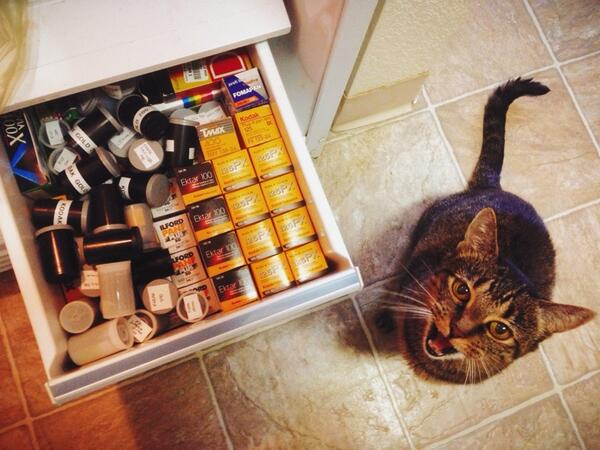 I think I have too much film. Bonnie agrees. #allthePlusXinDenver #believeinfilm http://t.co/GNGNB9liaN
