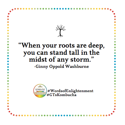 """""""When your roots are deep, you can stand tall in the midst of any storm."""" -@gwashburne  #WordsofEnlightenment http://t.co/OyUI4KZHwO"""