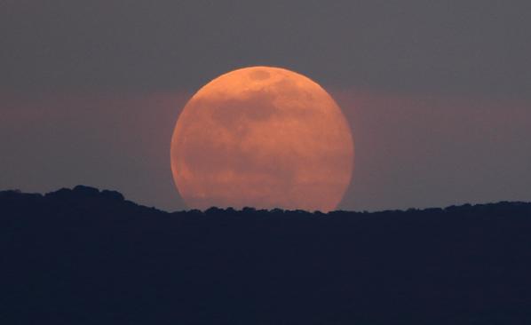 RT @adleon7: Fotos de la salida de la Luna hoy desde Querétaro, México http://t.co/hOdNG7Q6Q7