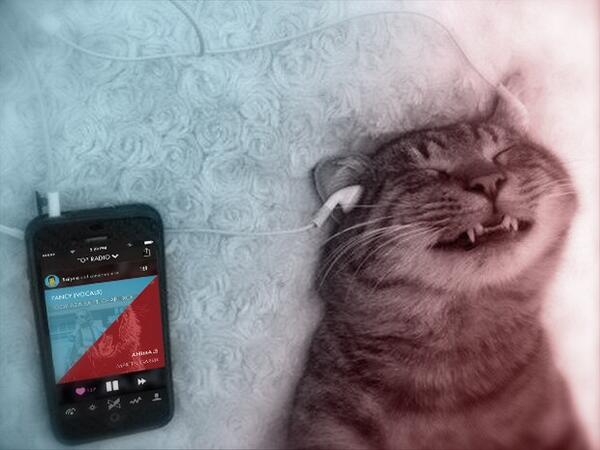 crossfader radio will be arriving next week for party cats all over the world @CrossfaderApp @djz @JakeLamante http://t.co/RffbQxwGb7
