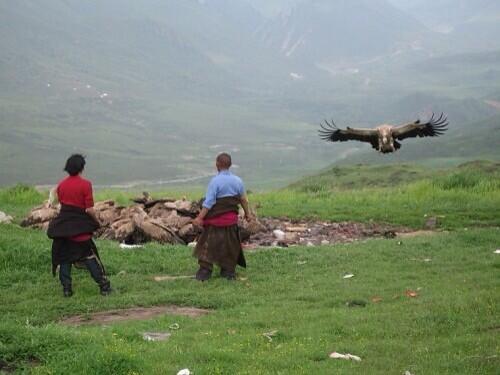 "Shhh… on Twitter: ""捏造 前半 中国が東トルキスタンに対して"