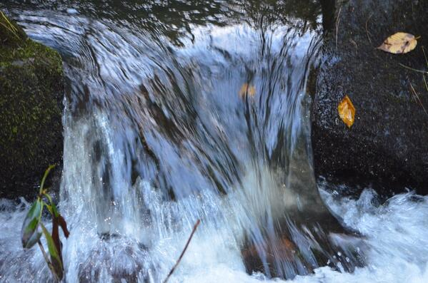 River on the Blue Ridge Parkway Oct 2013 http://t.co/4KO84hGdcS