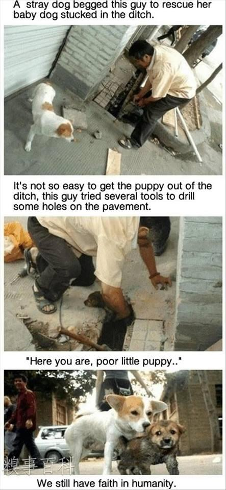 This is heart warming: http://t.co/8Hs3ZOqMCx