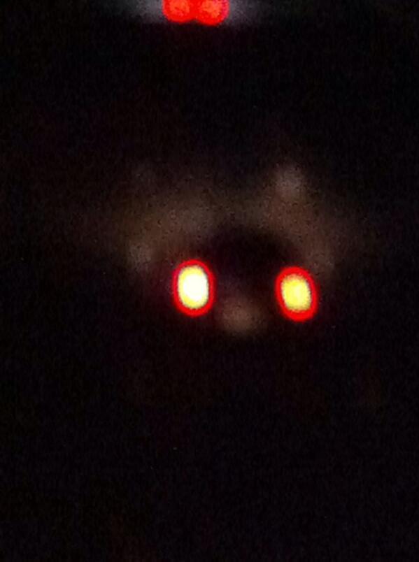 UFO http://t.co/Wu09gSH37O