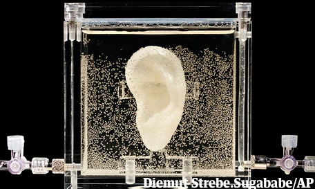 German museum exhibits Van Gogh's ear replica grown from relative's cells  http://t.co/Xs84MKJfoI http://t.co/bjXNDfBDD4