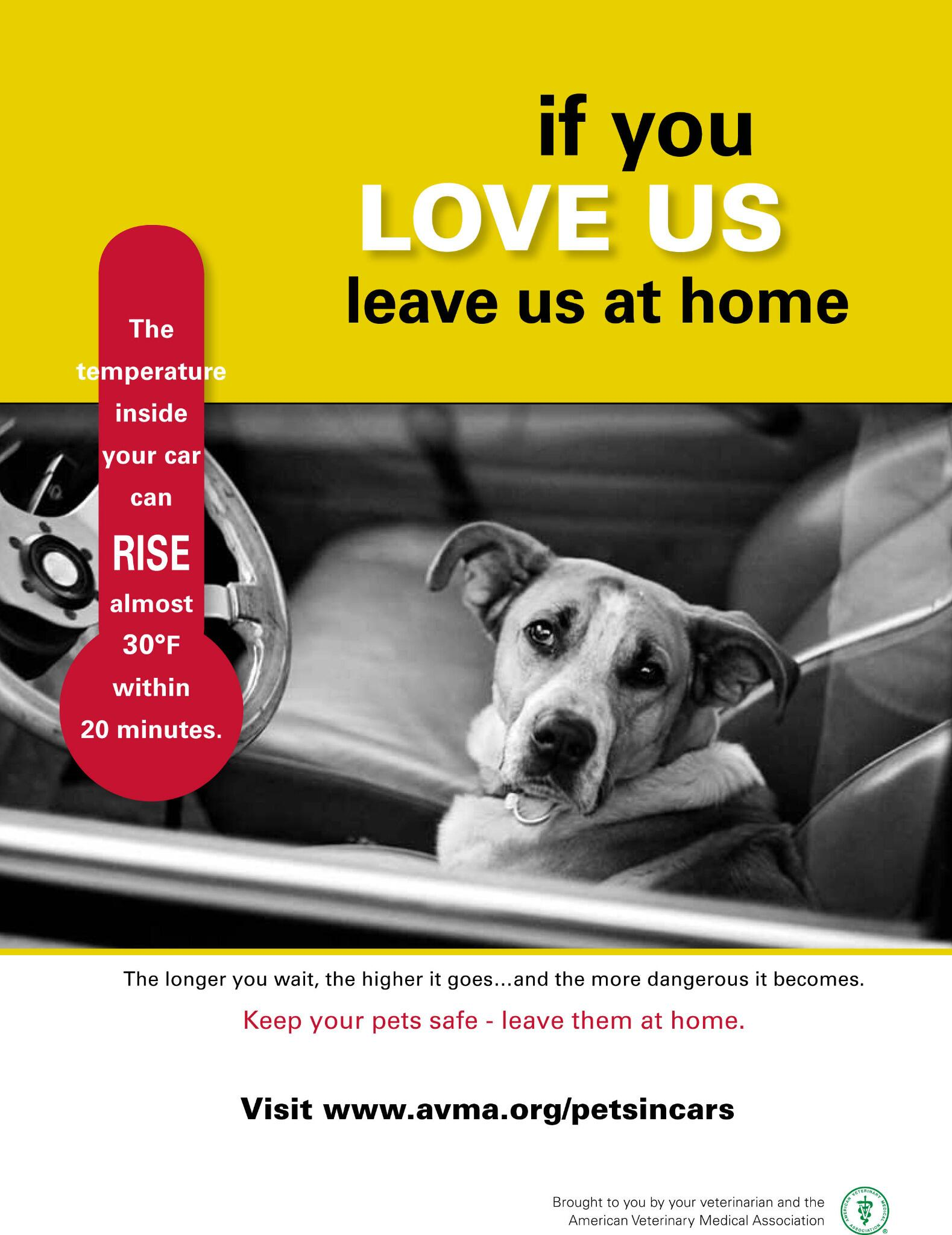 RT @AVMAvets: If you love your pets, sometimes it's best to leave them at home. http://t.co/ThjZ2vEgBM