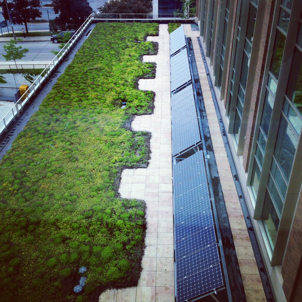 RT @MarquetteU: Did you know that Marquette's Engineering Hall is LEED certified? It includes a green roof with solar panels. http://t.co/XPA94CMhon