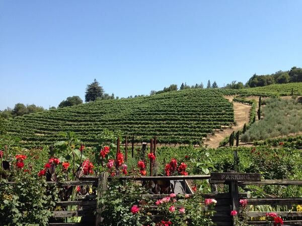 Loving our sommelier Max's picks as we taste our way thru Sonoma #wine country http://t.co/3eaxOHfa2T