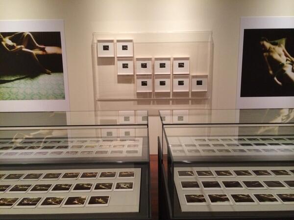 「バルテュス 最後の写真」展の内覧会、早目に着いて、一番に拝見できた。 展覧会は三菱一号美術館 歴史資料室にて明日から。 http://t.co/vxZUPrZe7K