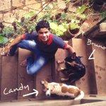 RT @MahiSensation: @msdhoni 'Candy' with her crush 'Bruno' :D #CandyCrush  And seems I m kabaab me haddi :p