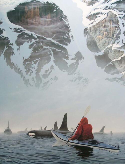 Canoeing with Orcas: http://t.co/rLQmwuF850