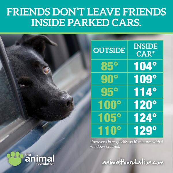 PLEASE RT! Never leave your pet in a car, even with windows cracked! #Vegas #ResponsiblePetOwnership http://t.co/CvWqgH1Btc