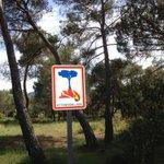 Les beaux jours arrivent. Un réflexe : ne jetez pas vos mégots dans la nature ! Infos sur http://t.co/uJ6eVizQ6z #Var http://t.co/lzmuMA0mcj
