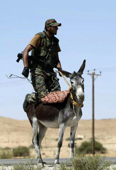 #Libya in one picture http://t.co/g1KAPl8krO