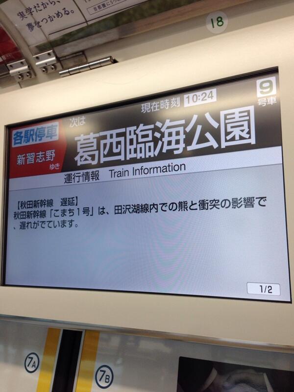 秋田新幹線「こまち1号」熊と衝突。 http://t.co/5jlPPlGWVF