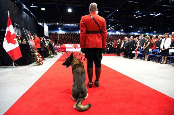 Fallen Mountie's K9 partner cries next to casket at funeral http://t.co/VsHPbKTfDw http://t.co/p6HagA5R5p #MonctonSpirit