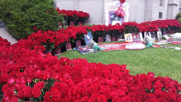 Michael Jackson fans leave 15,000 red roses at Forest Lawn Glendale.   He died 5 years ago today. http://t.co/b17zxTgNuo
