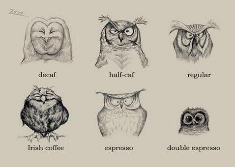 What type of coffee owl are you? http://t.co/AoE25yj18w