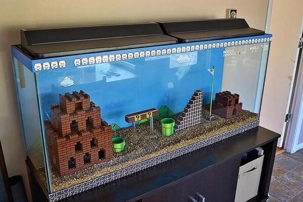 Best fish tank ever: http://t.co/jdSvthedbV