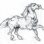 Image of horse from Twitter