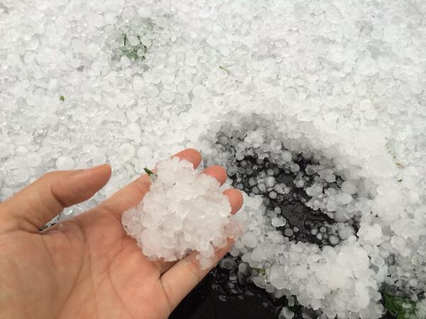 玉砂利のような雹がみっちり積もりました。雹害 http://t.co/C3CVgxi3UF