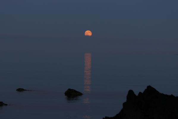 Tonight's Honey Moon rising #HoneyMoon2014 http://t.co/L4PsnmYdHB